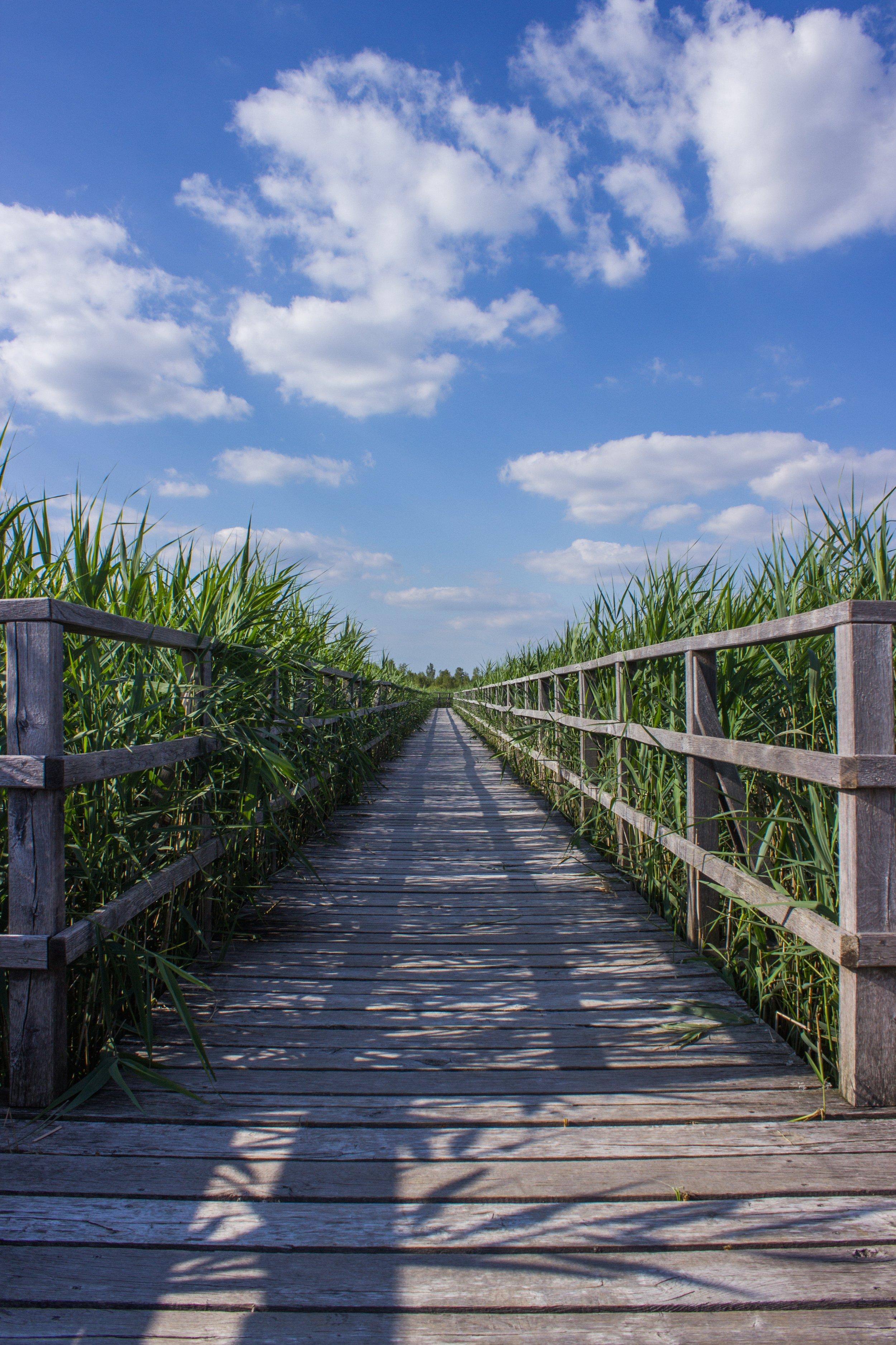 boardwalk-bridge-cloud-276272.jpg