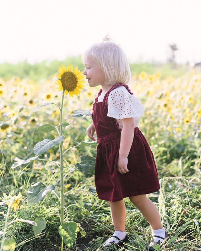 We're enjoying the last few weeks of summer vacation with family that is in town🌞I can't get over this sweet photo from my sunflower minis! 🌻 . . . . . #sunflower #sunflowerfield #houston #needville #houstonphotographers #houstonfamilyphotographer #flowers #flower #flowerfield #toddlerfashion