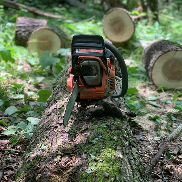 Lots of trees down at the cabin, great excuse for some #lumberjacking @husqvarnausa #cabinlife #explorewisconsin #chainsaw