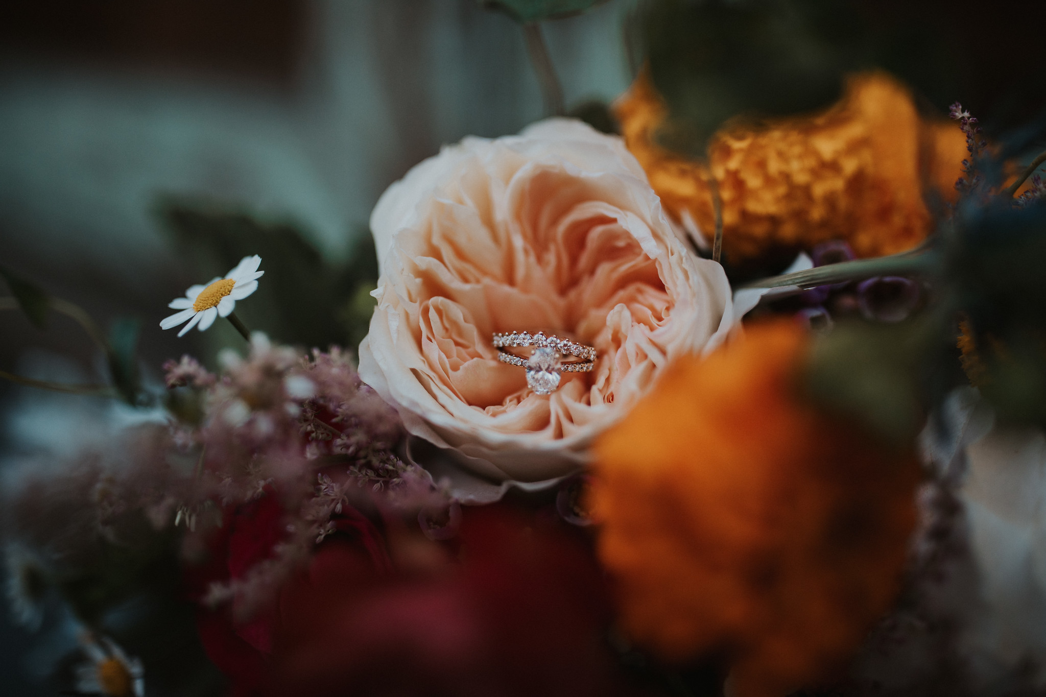 Details- photography by Ariele Chapman