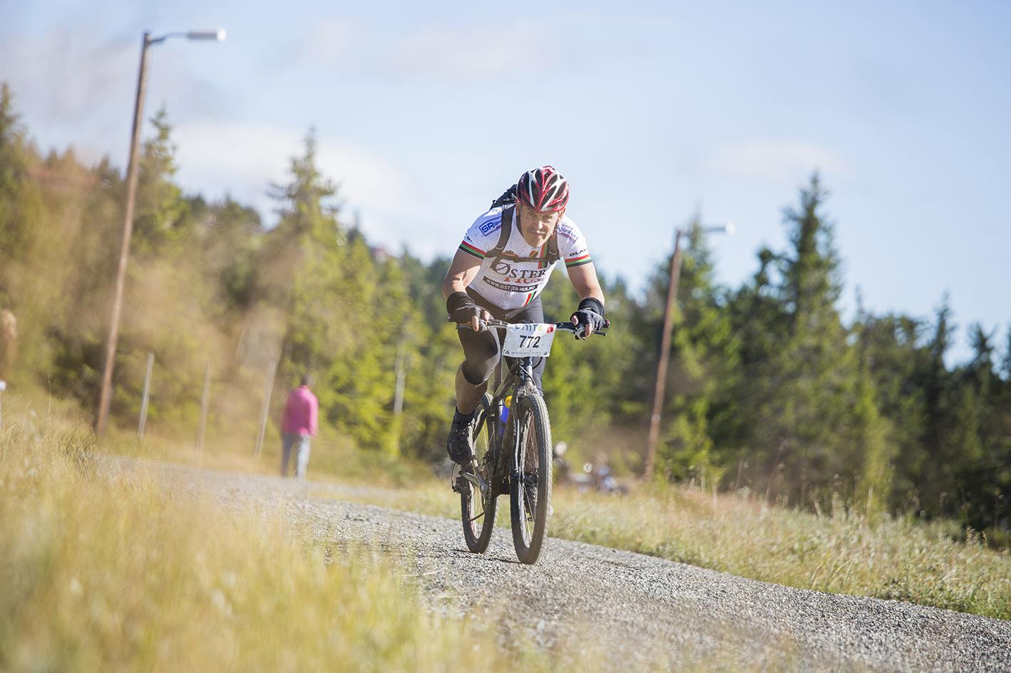 Birken sykkel 3.jpg