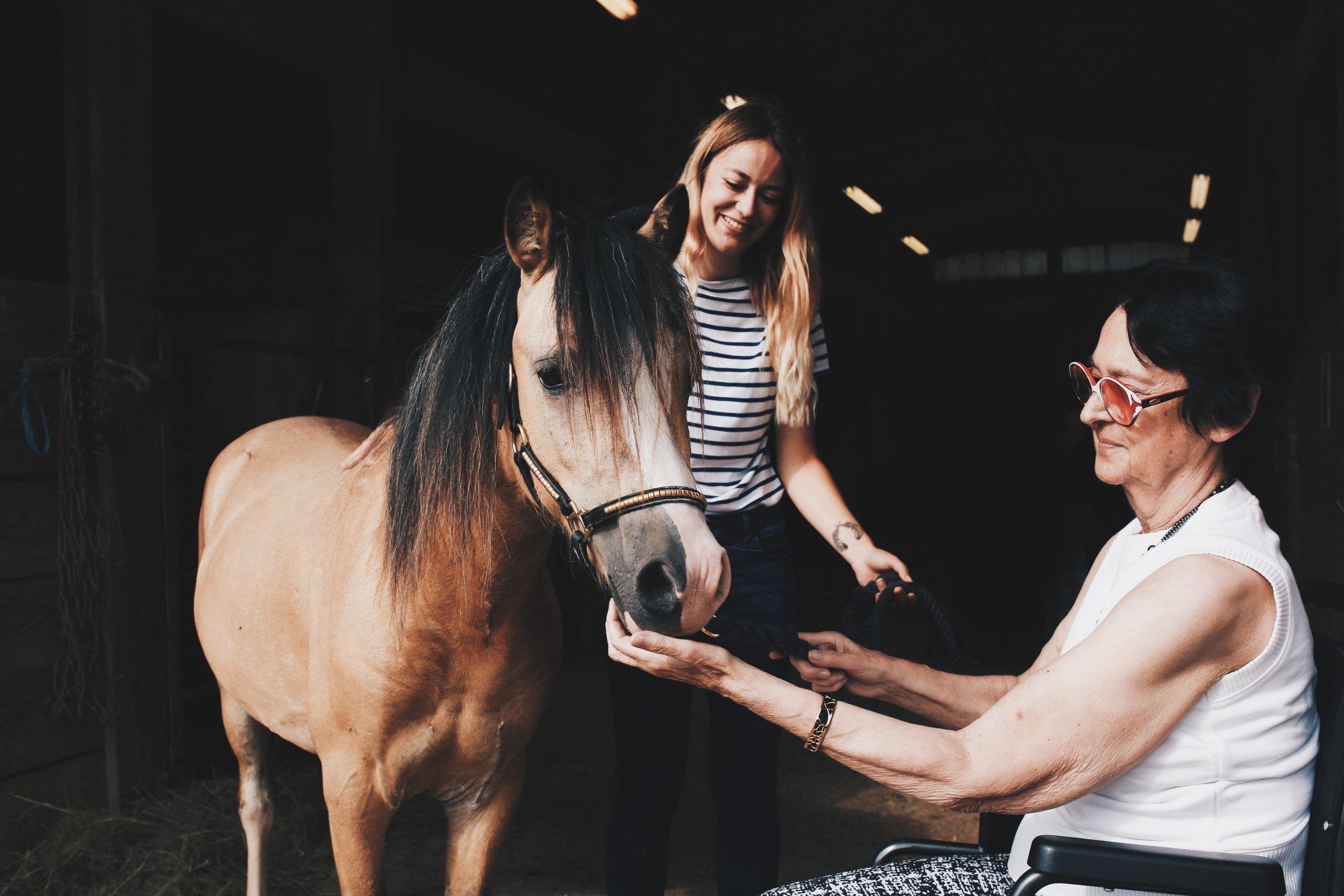 Bienfaits - De la relation avec le cheval naissent l'utilisation et le développement des pleines capacités de la personne, qu'elles soient psychologiques ou corporelles : communication, adaptation, apprentissages, concentration, conscience de soi et de l'autre, gestion émotionnelle, équilibre postural, utilisation de la motricité fine et globale, éveil des sens…