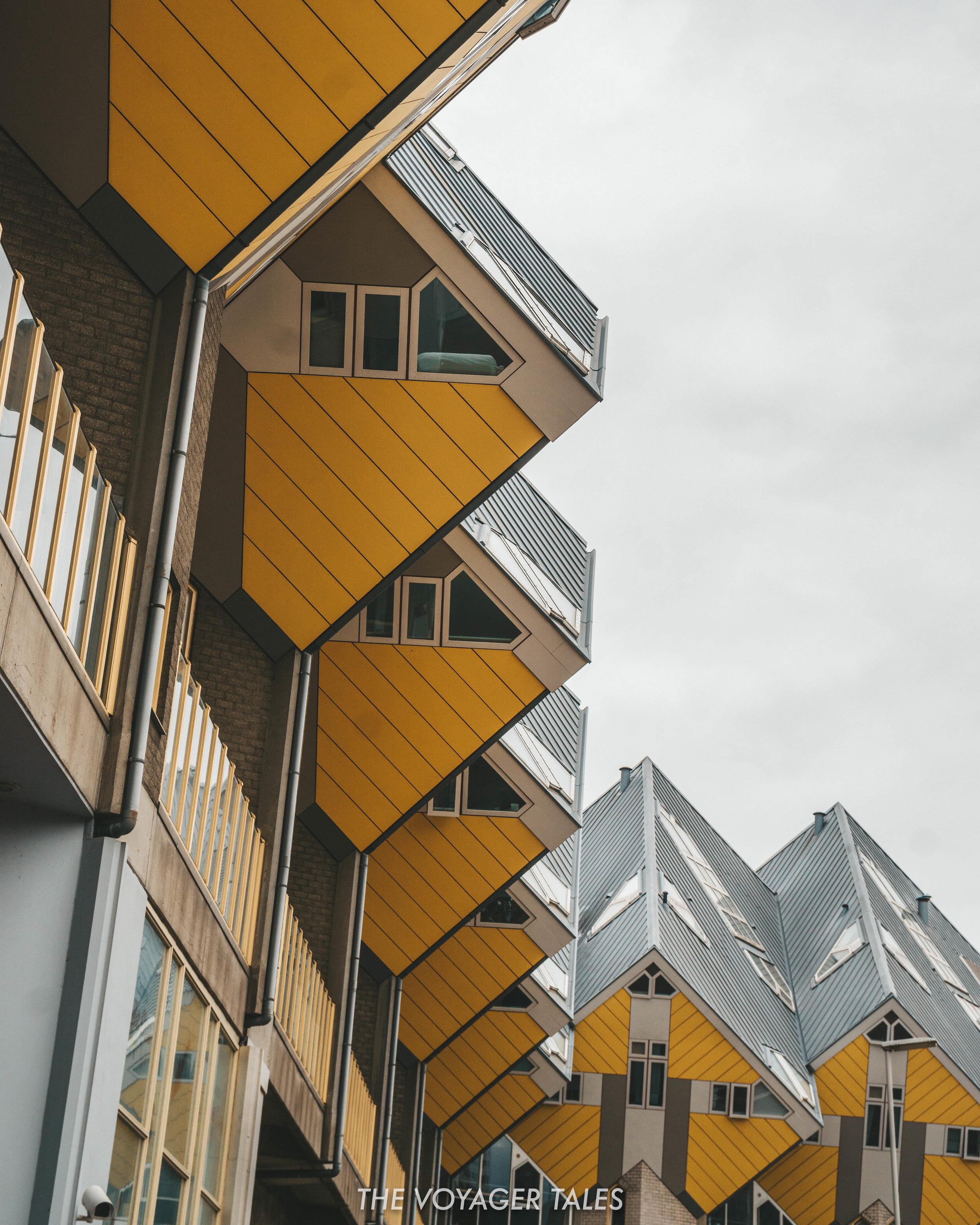 Rotterdam Architecture tour.jpg