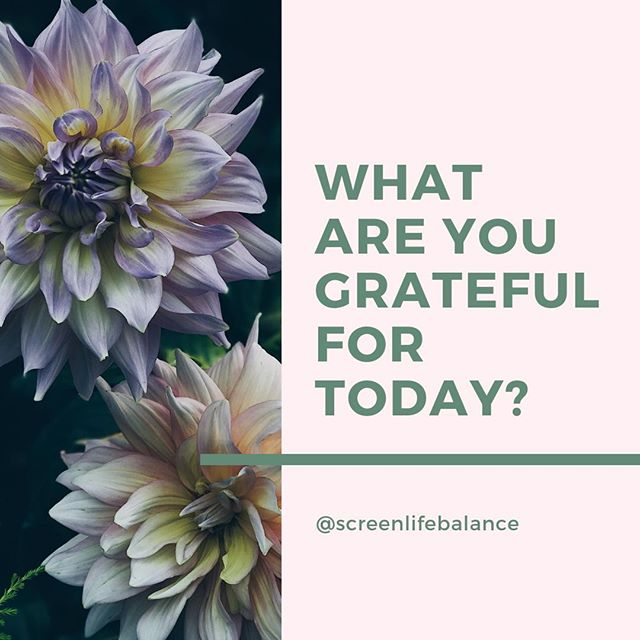 Time for your weekly gratitude prompt! What are three things you feel grateful for in your life right now? And then ask yourself: how many of those things do you experience while you're staring at a screen? . . . . . #phonebreakup #mindfulliving #screenlifebalance #digitalwellbeing #mindfulness #scrollless #lifehack #digitaldetox #digitalminimalism #screenlife #lifeinbalance #liveinthemoment #enjoylife #mindfultech #screentime #happiness #mindfultech #screentime #screenlife #enjoylife #notice #stopandnotice #payattention #goodmorning #wednesday #gratitude #attitudeofgratitude