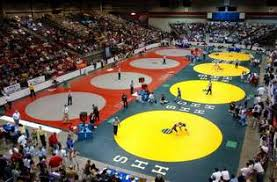 hhs wrestling - state pan pic.jpg