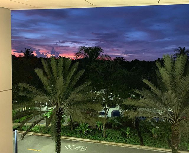 Not a bad view to end another Monday in #miami #frostschoolofmusic #frostschoolofsunsets