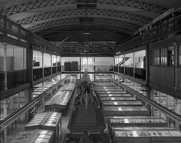 Photo of the interior of the Wagner Free Institute of Science, Philadelphia, Pennsylvania, by Joseph Elliott, Historic American Buildings Survey photographer, Library of Congress, from: https://en.wikipedia.org/wiki/Wagner_Free_Institute_of_Science#/media/File:WagnerFreeInstitute.jpg