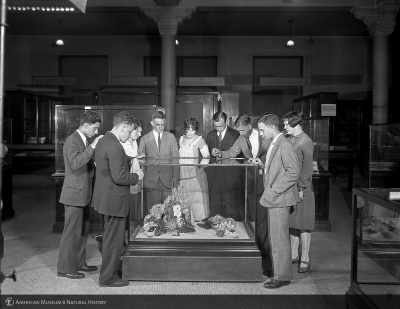 Students visiting the American Museum of Natural History in 1927. Copyright the American Museum of Natural History, from http://lbry-web-007.amnh.org/digital/index.php/items/show/22455 .