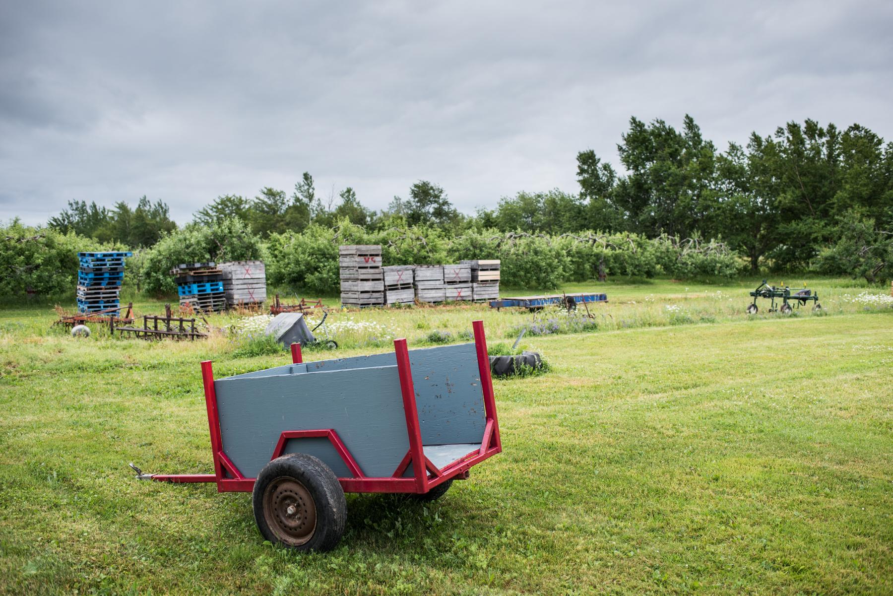 Copy of Verger Goguen - Récolte de Chez Nous - Really Local Harvest
