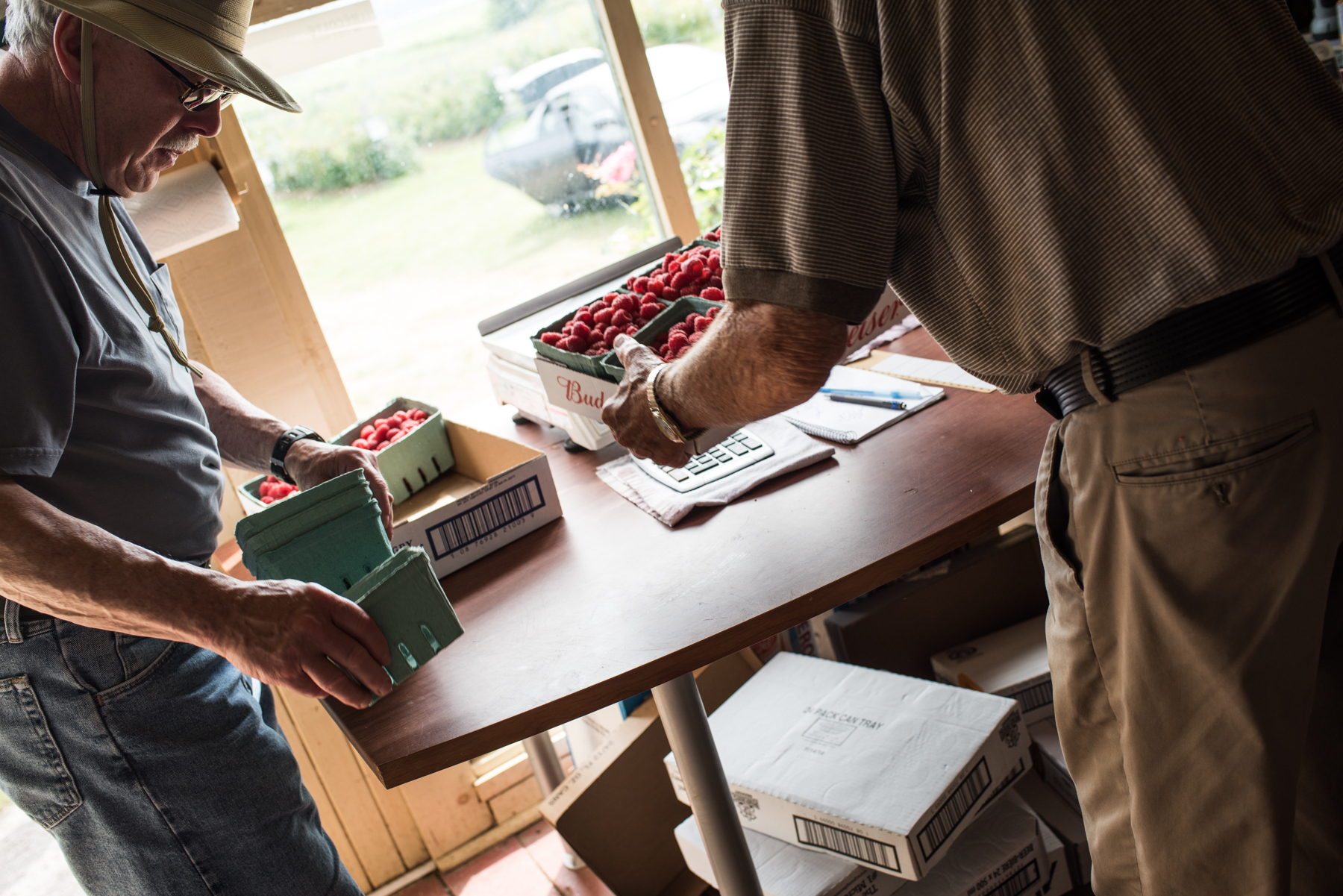 Copy of Harper's Raspberry U-Pick - Récolte de Chez Nous - Really Local Harvest