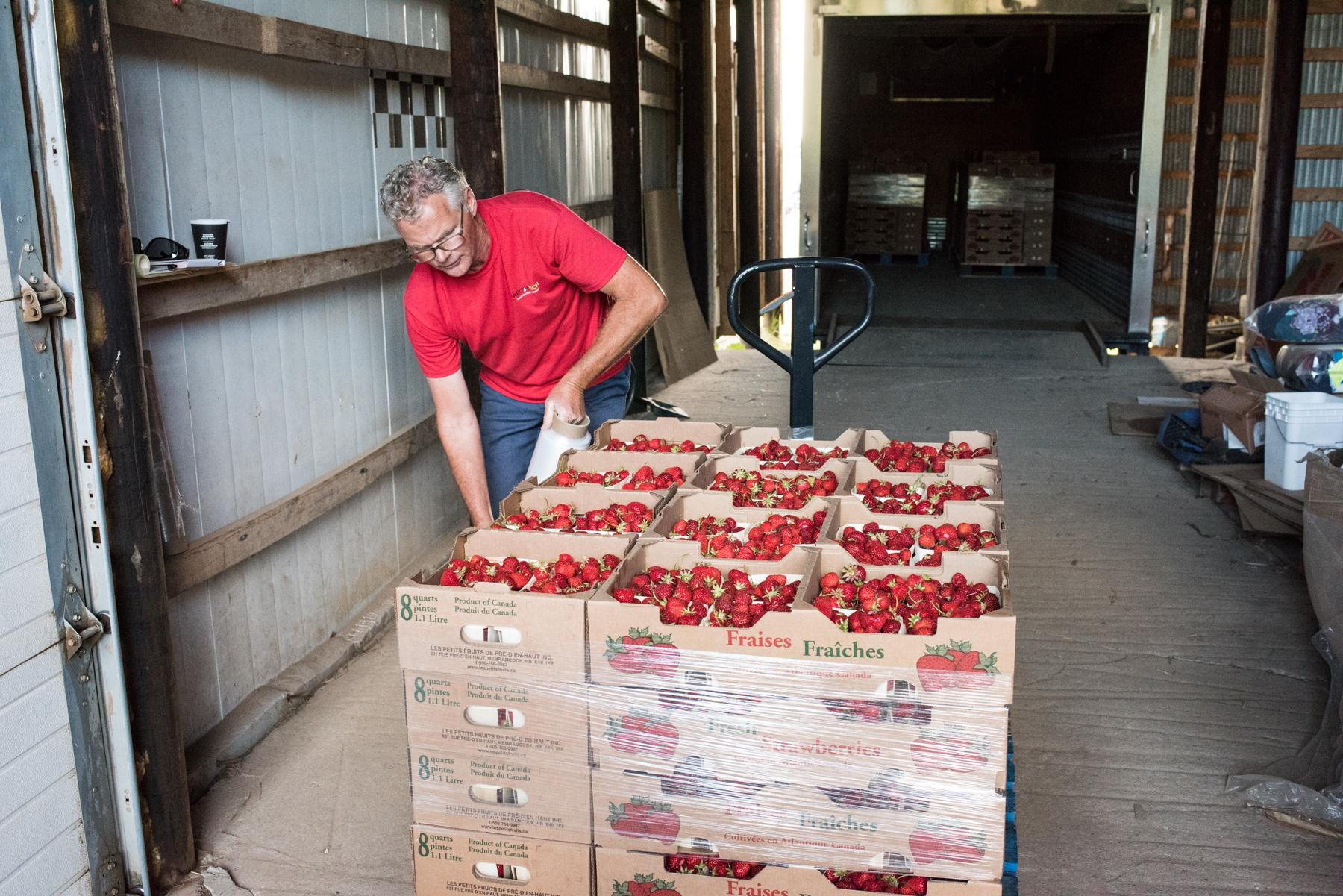 Les Petits Fruits de Pré-d'en-Haut - Récolte de Chez Nous - Really Local Harvest