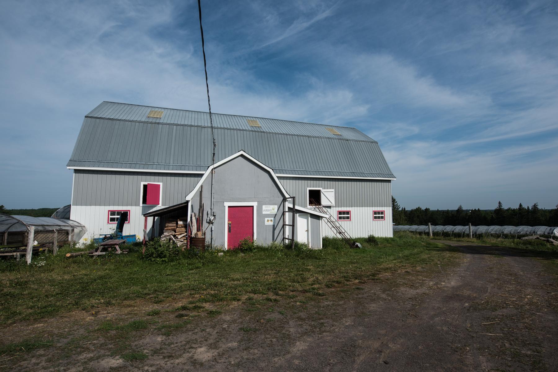 Windy Hill Farm - Récolte de Chez Nous - Really Local Harvest