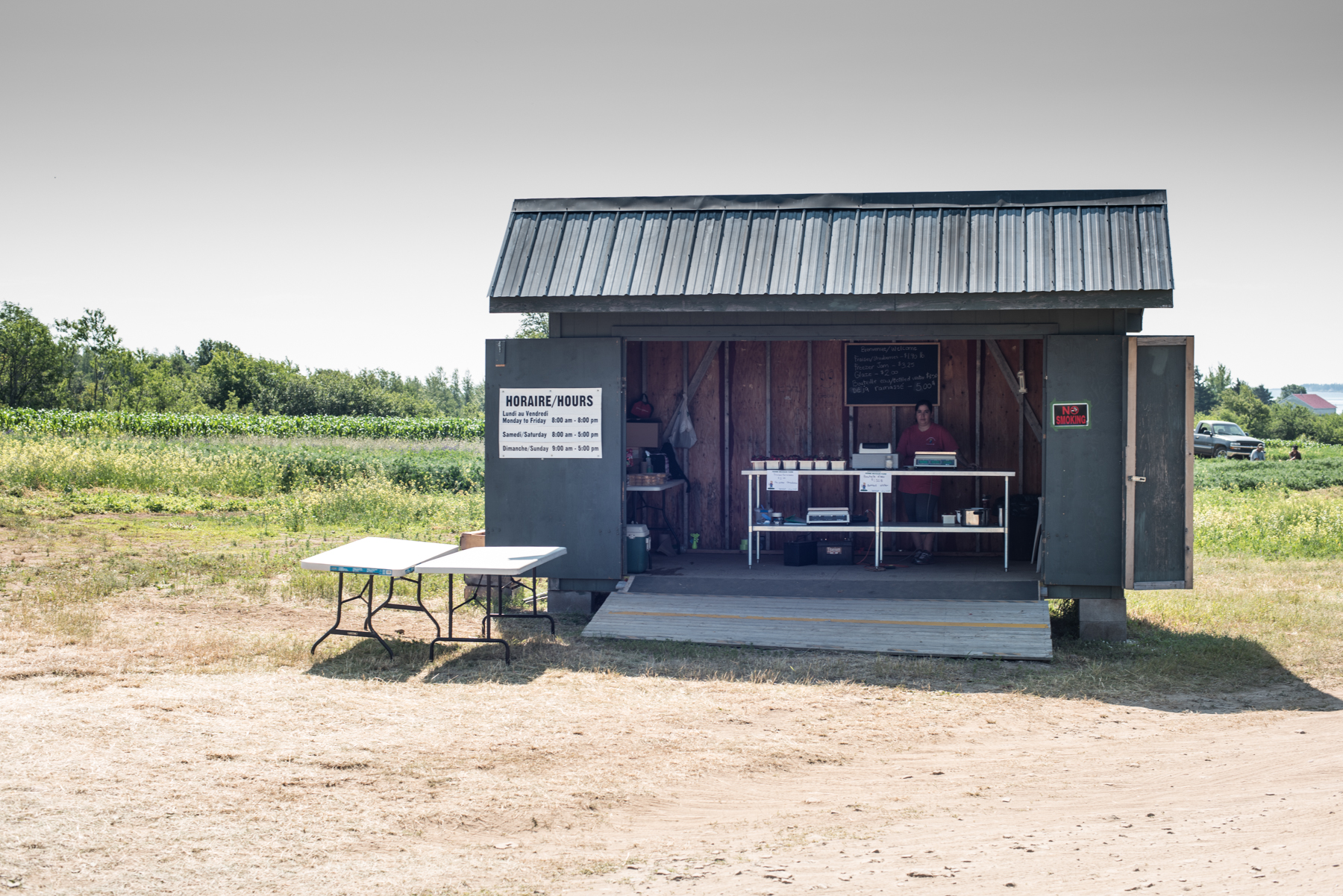 Copy of Ferme Michaud Farm - Récolte de Chez Nous - Really Local Harvest