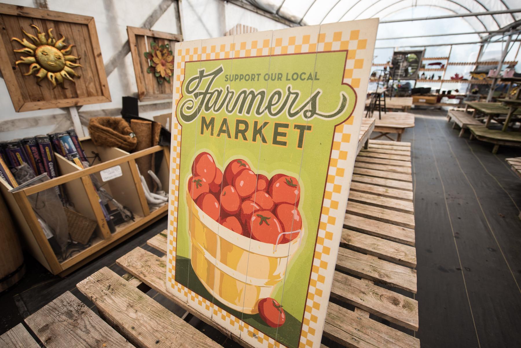 M. Tomate - Récolte de Chez Nous - Really Local Harvest