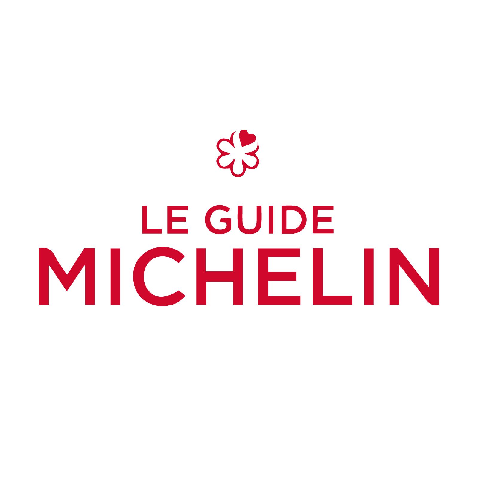 Press Logos_Michelin.png