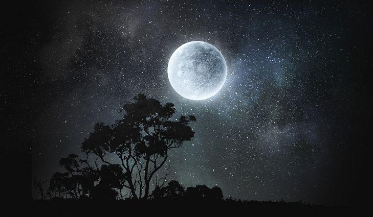 full moon.jpg