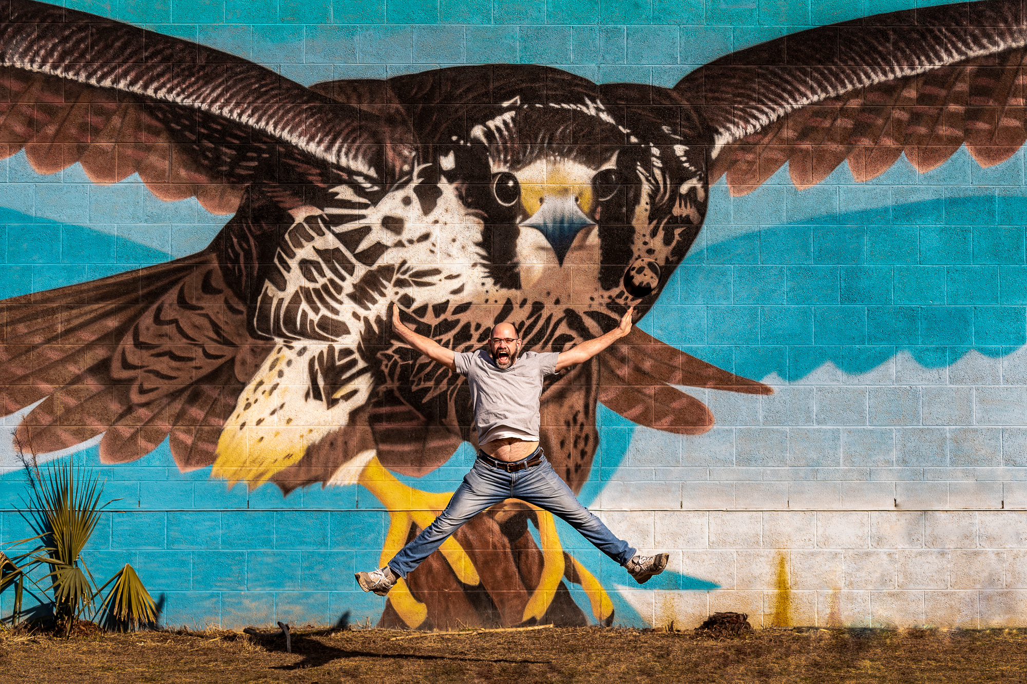 Eagle Flight Chris Baker Evens
