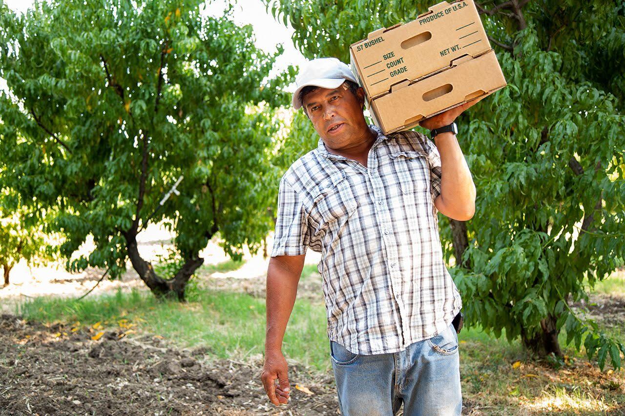 Eusebio Sayago, our farm manager