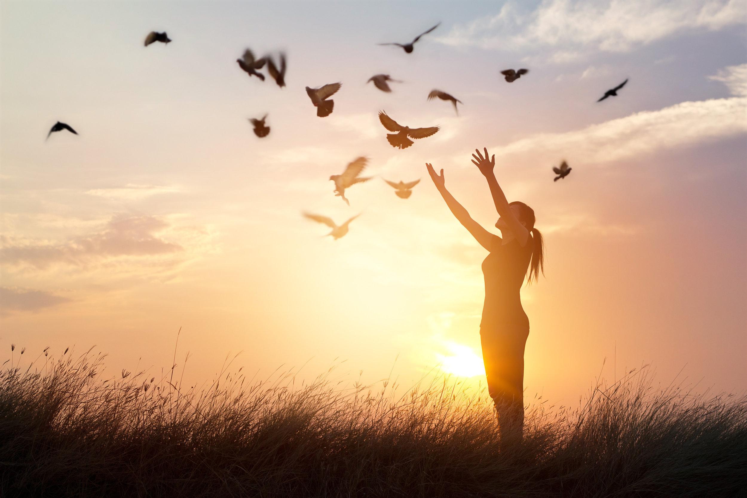 Woman praying and free bird enjoying nature on sunset background, hope concept_.jpg
