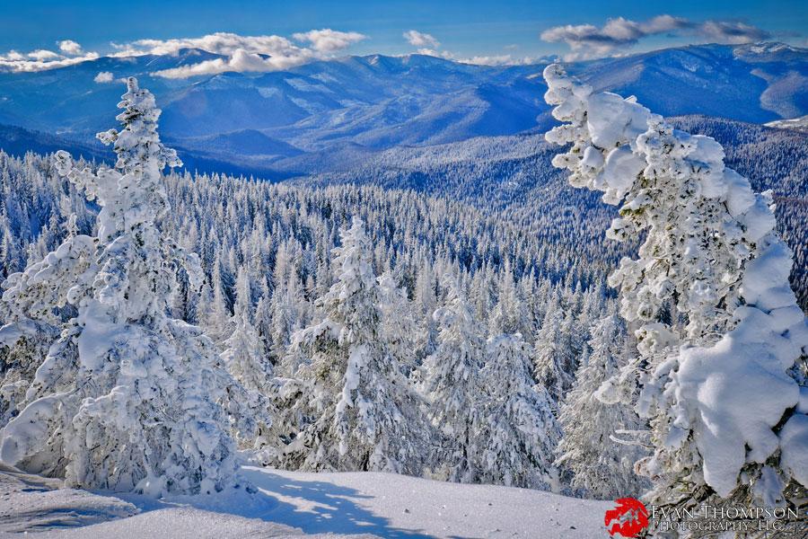 Libby MT Snow.jpg