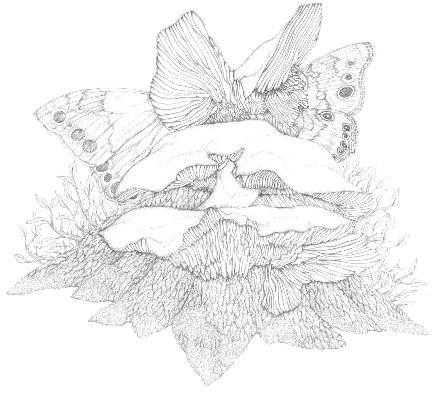 image 5.jpg