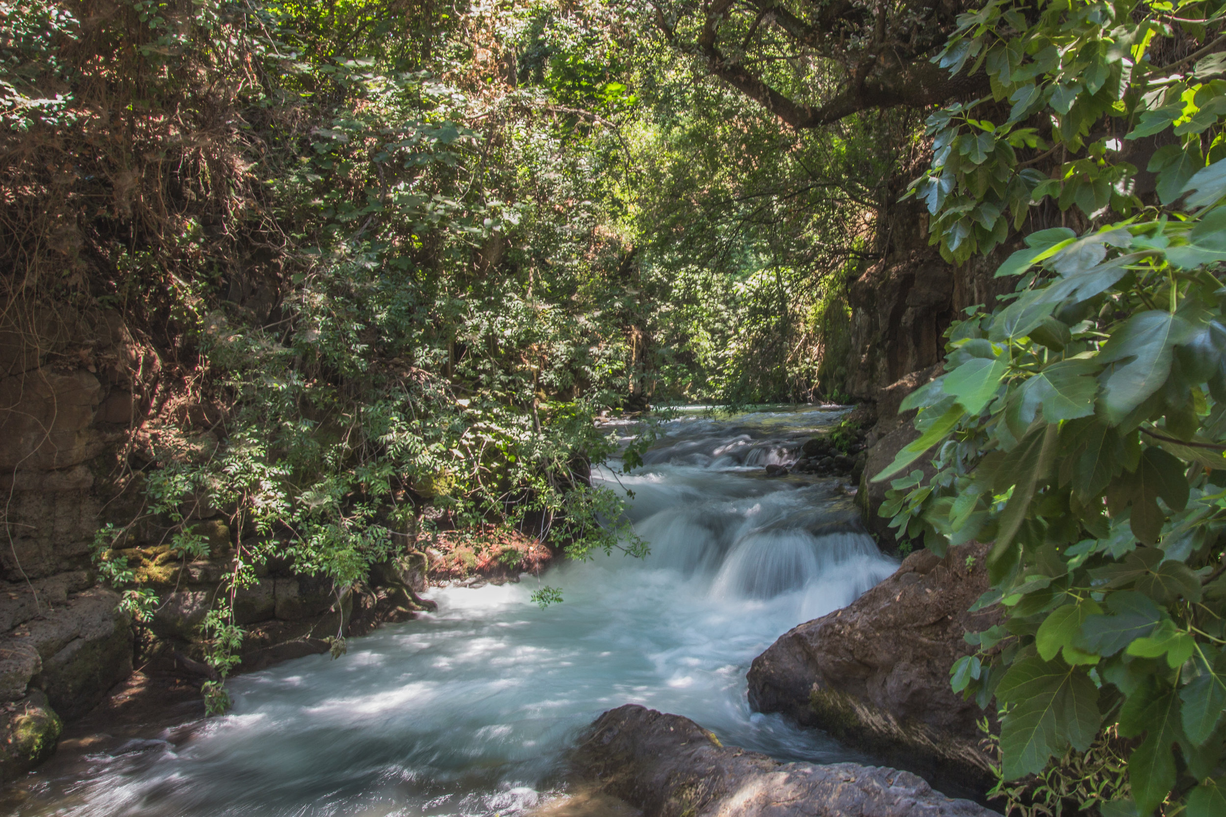 One of the falls at Banias Falls and Springs, national parks here in Israel.  It was a short walk in and out.