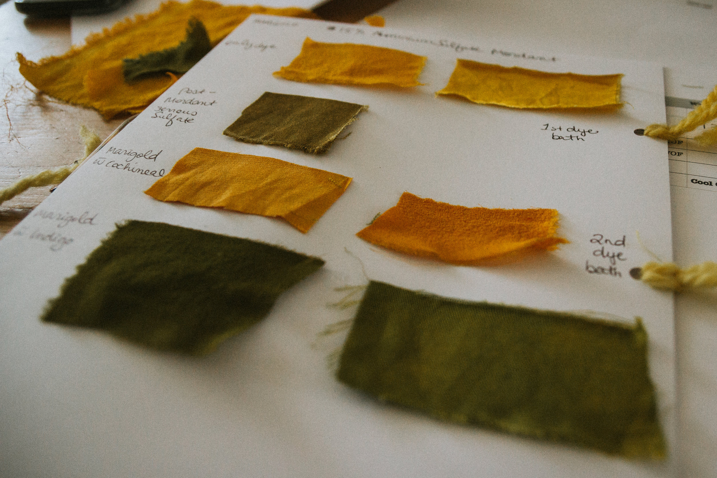 We cut up our dyed fabrics into swatches to document what we had learned that day, and to continue our experiments at home.