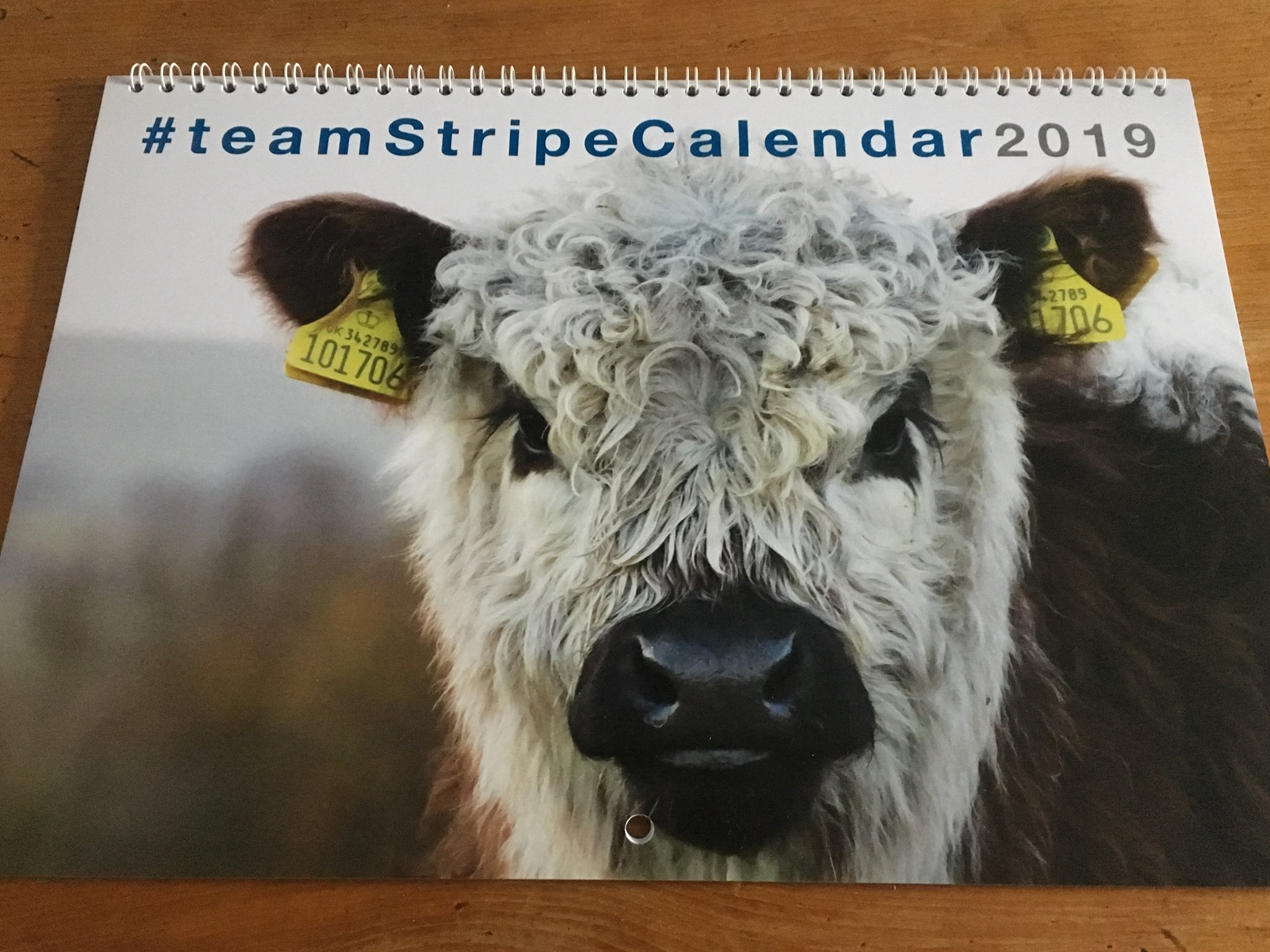 - James Taylor produces a #teamStripe Calendar every year to raise money for children's hospice South West and #StayStrongStu which includes many photos of the Howen Riggits.UK £10 EU £13 Rest of World £15to order, email: teamstripecalendar@gmail.com