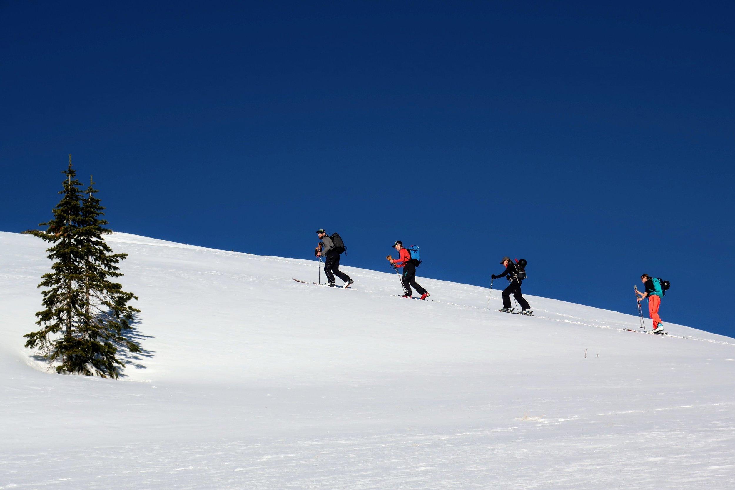 We rent full backcountry setups- Skis, Splitboards, Skins, Beacons, Shovels and Probes!