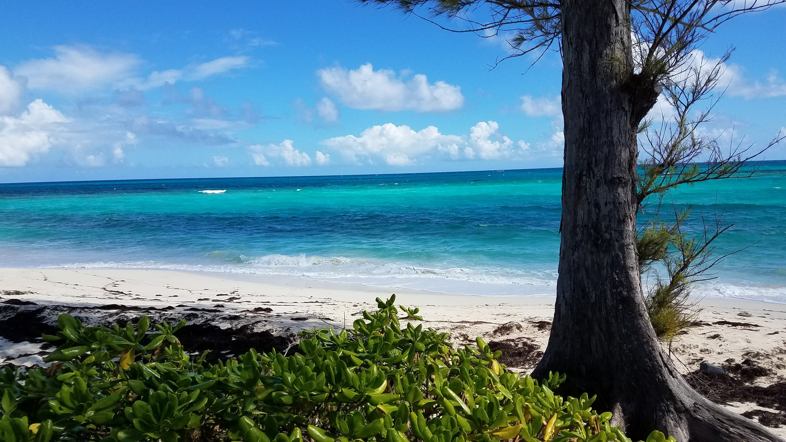 The beach where the bottle landed at Green Turtle Cay