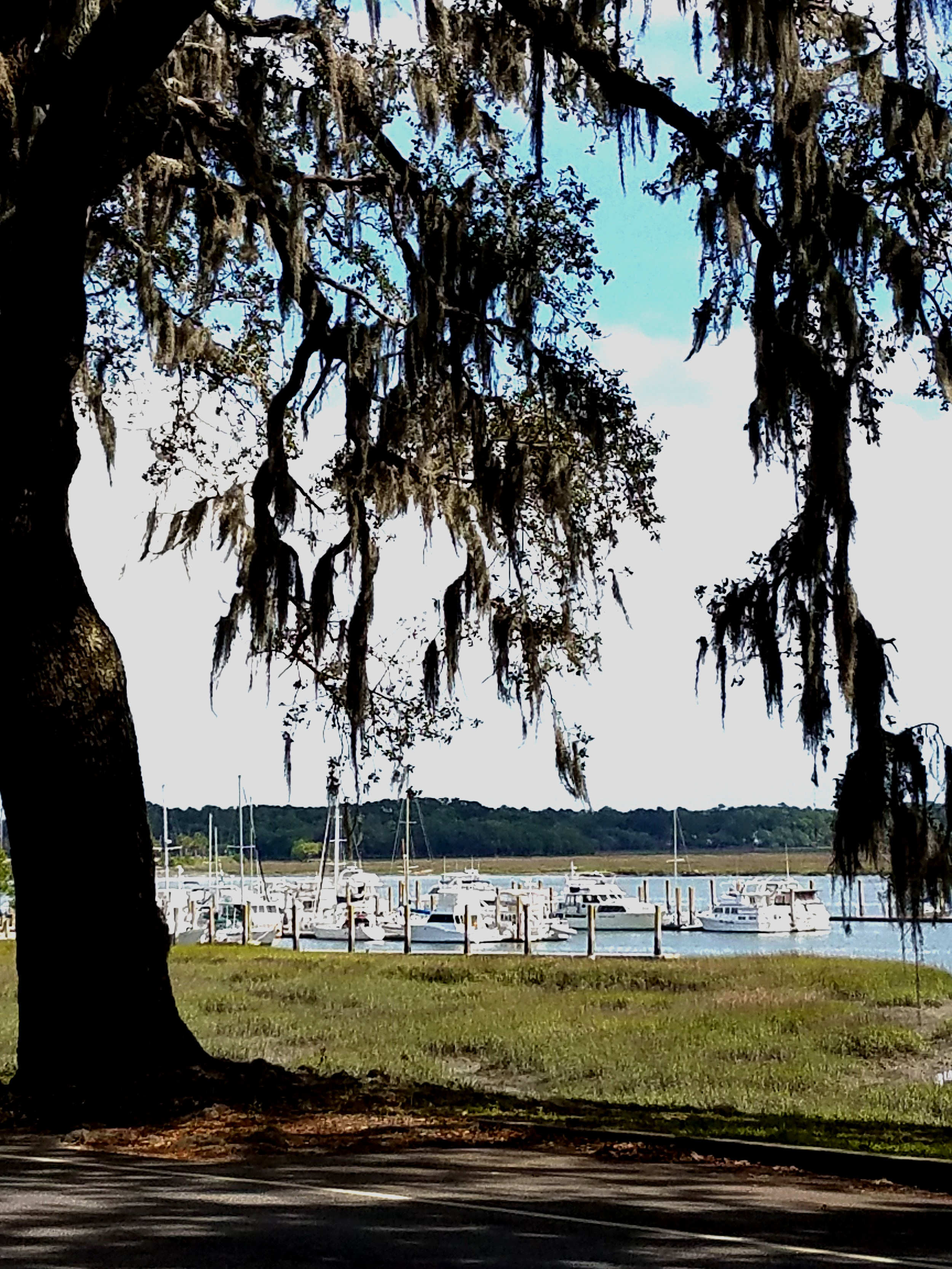The Downtown Marina at Beaufort is quite lovely