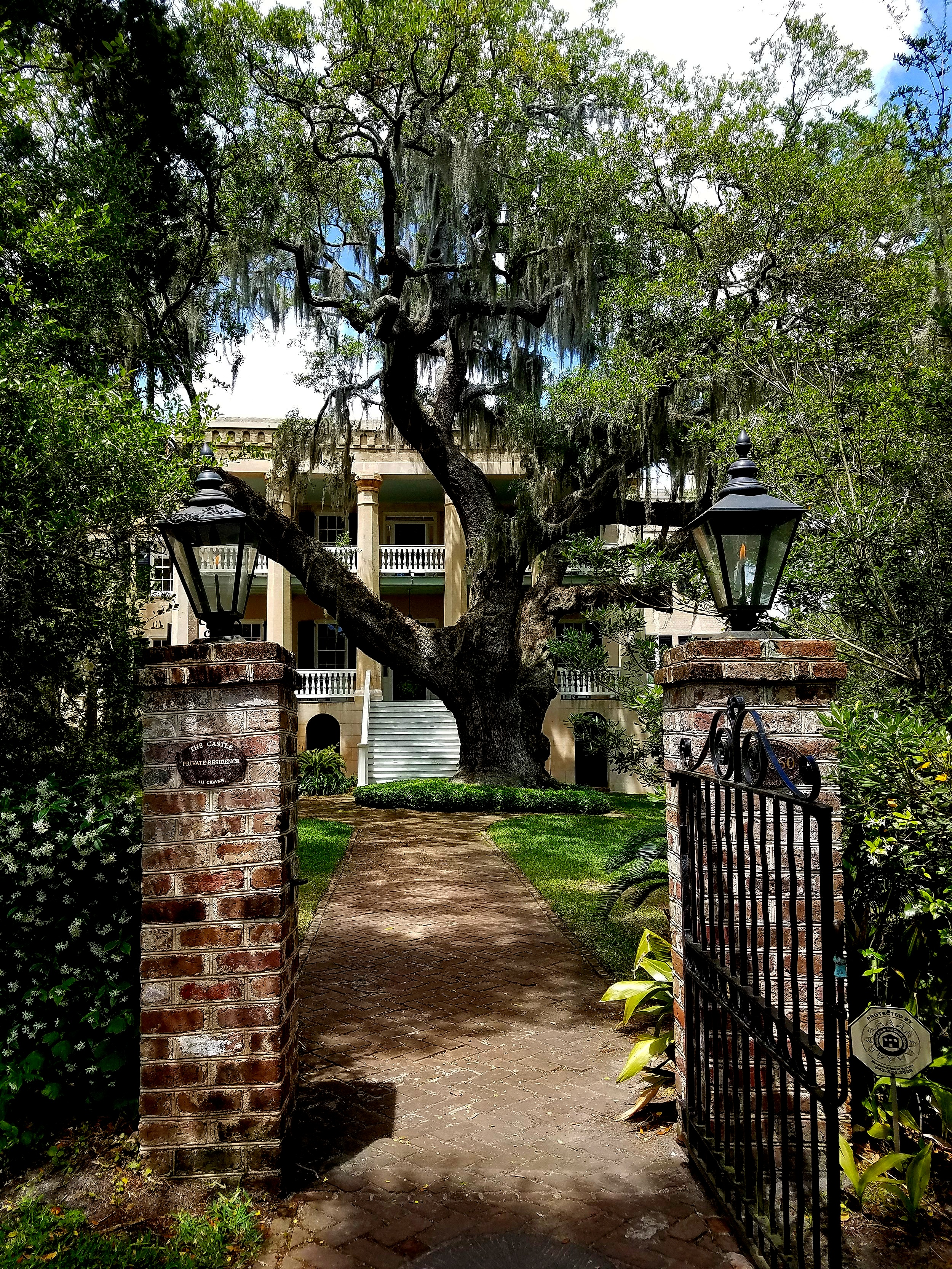 'The Castle'. ca. 1860. The live oak is over 300 years old.