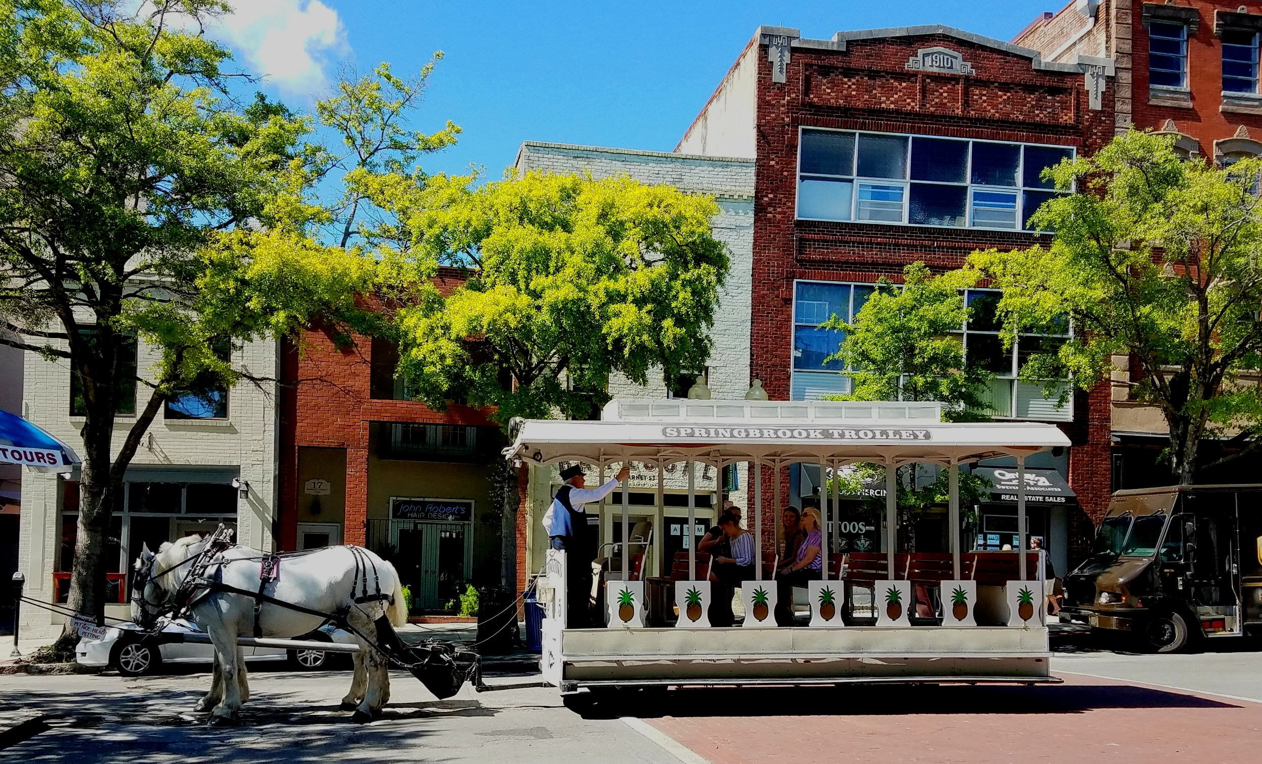 Sweet southern horse trolley rides in Wilmington NC…look at those pineapples!