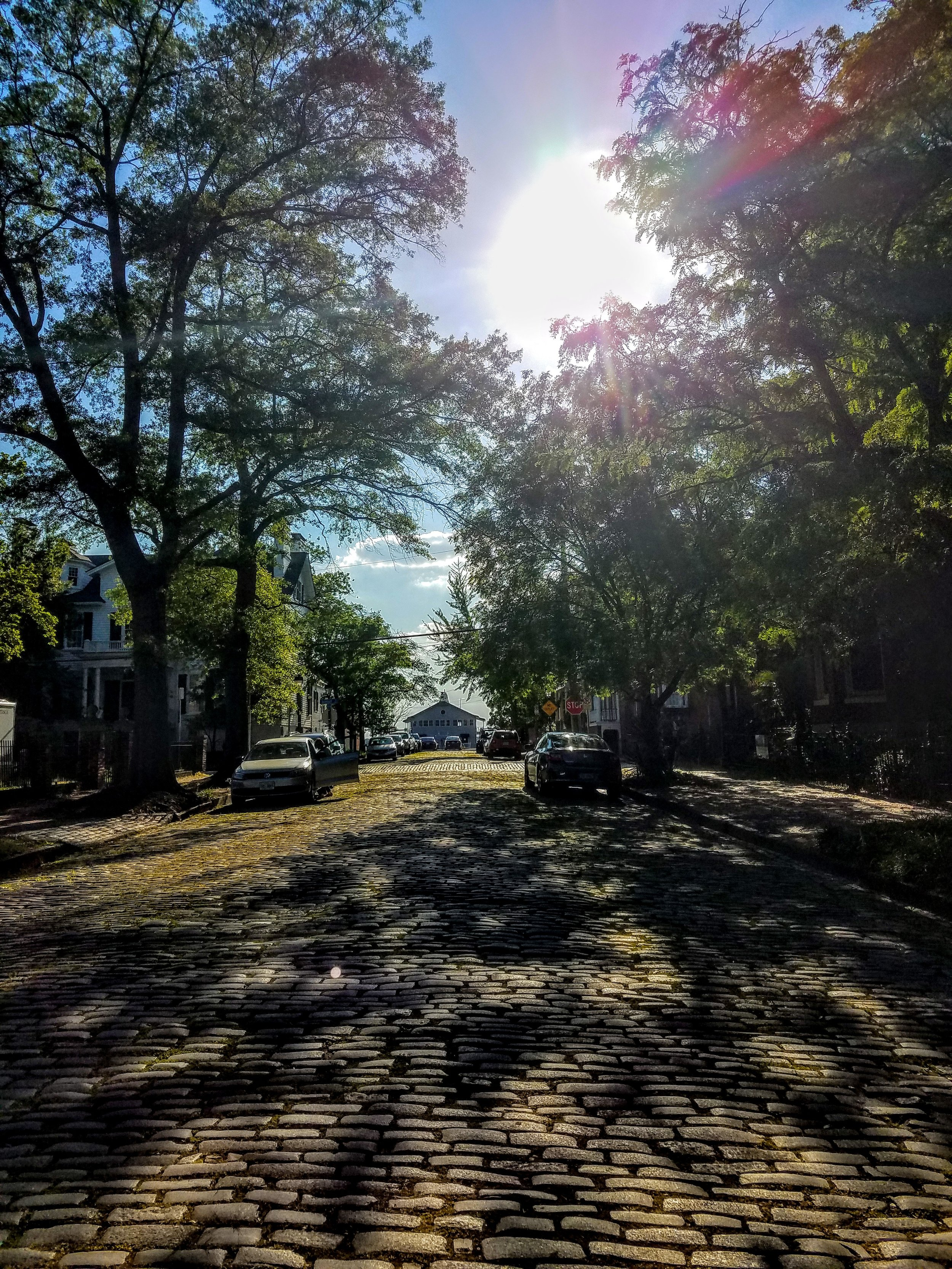 Freemason Street. The cities oldest surviving cobblestone street dating back to the early 18th century. Like Savannah they used the stones that were originally used as ballast in ships.