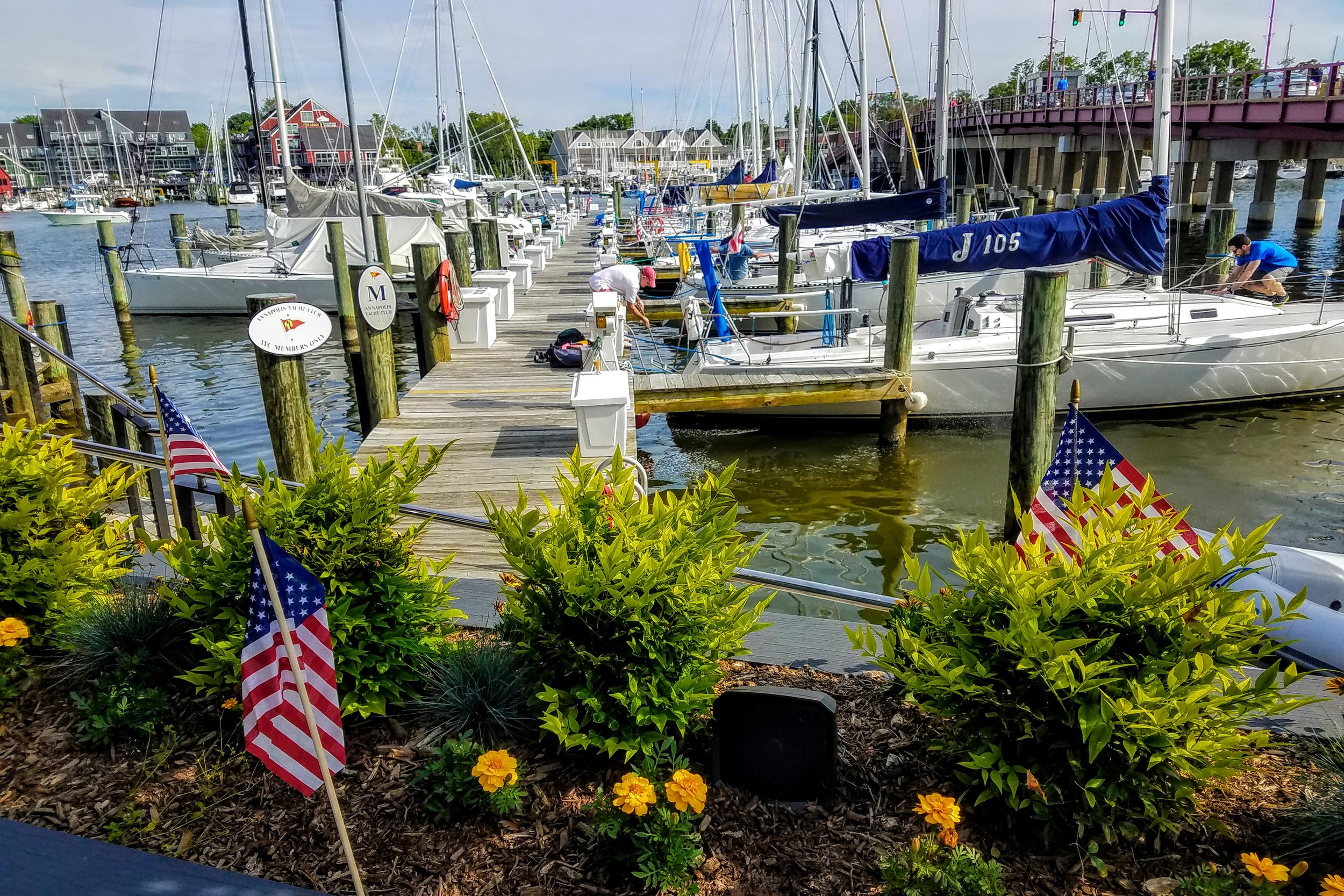 The Annapolis Yacht club J-boats