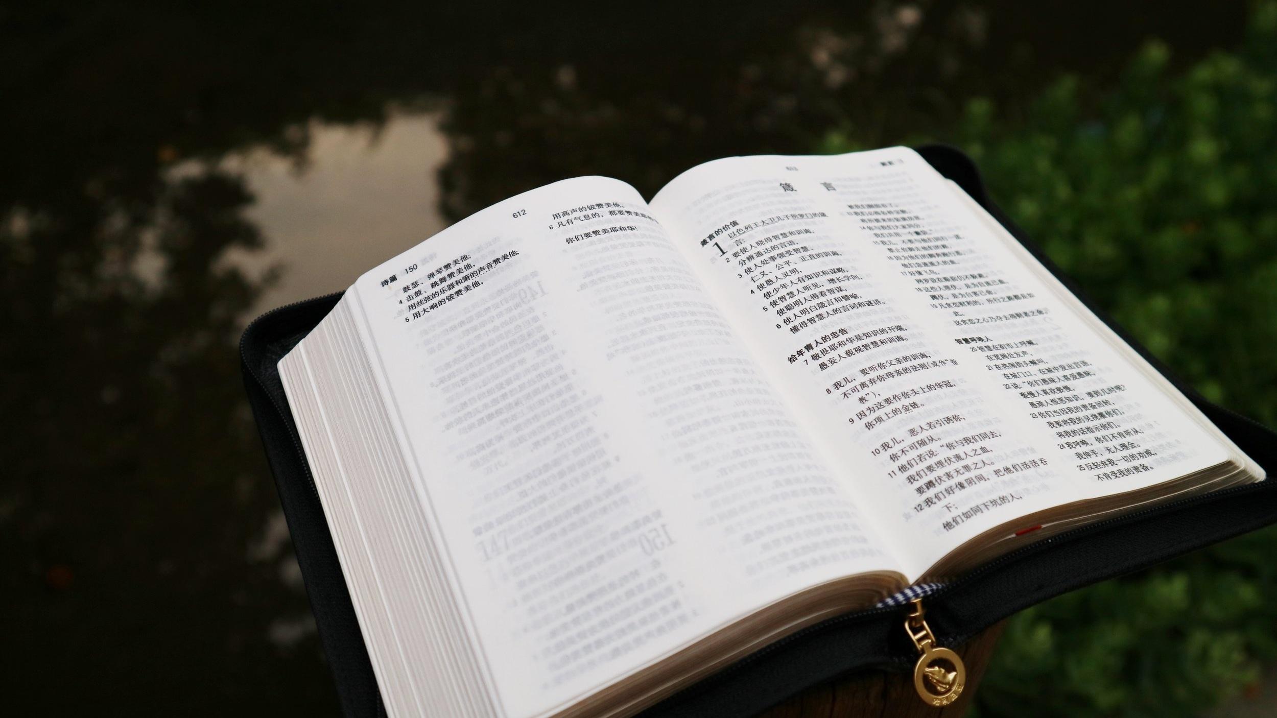 - seminary and pastoral training