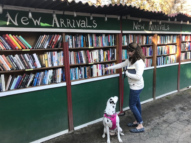 At the Book Barn with my pup