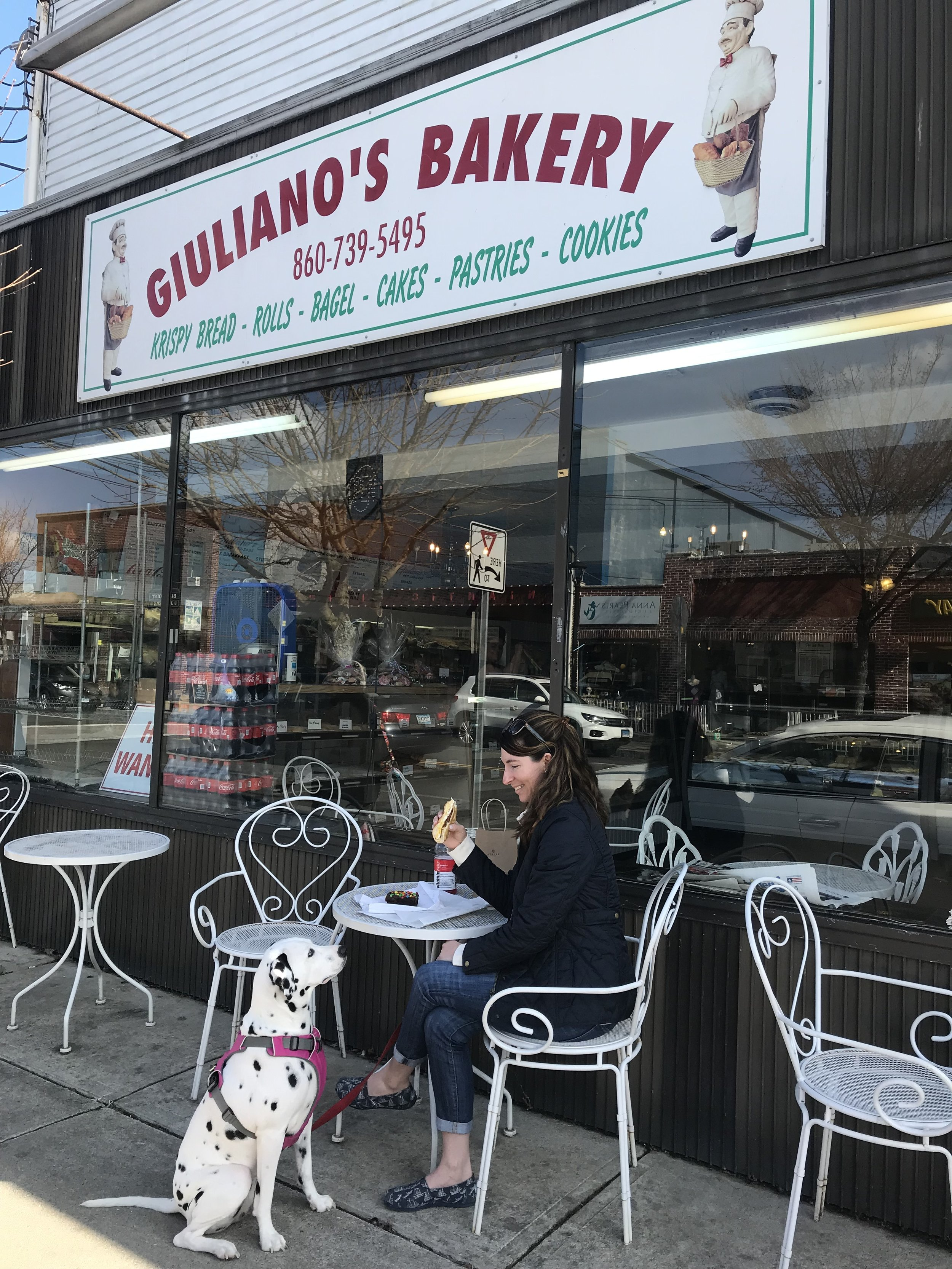 Lunch at Giuliano's bakery. My pup wants some of my egg sandwich!