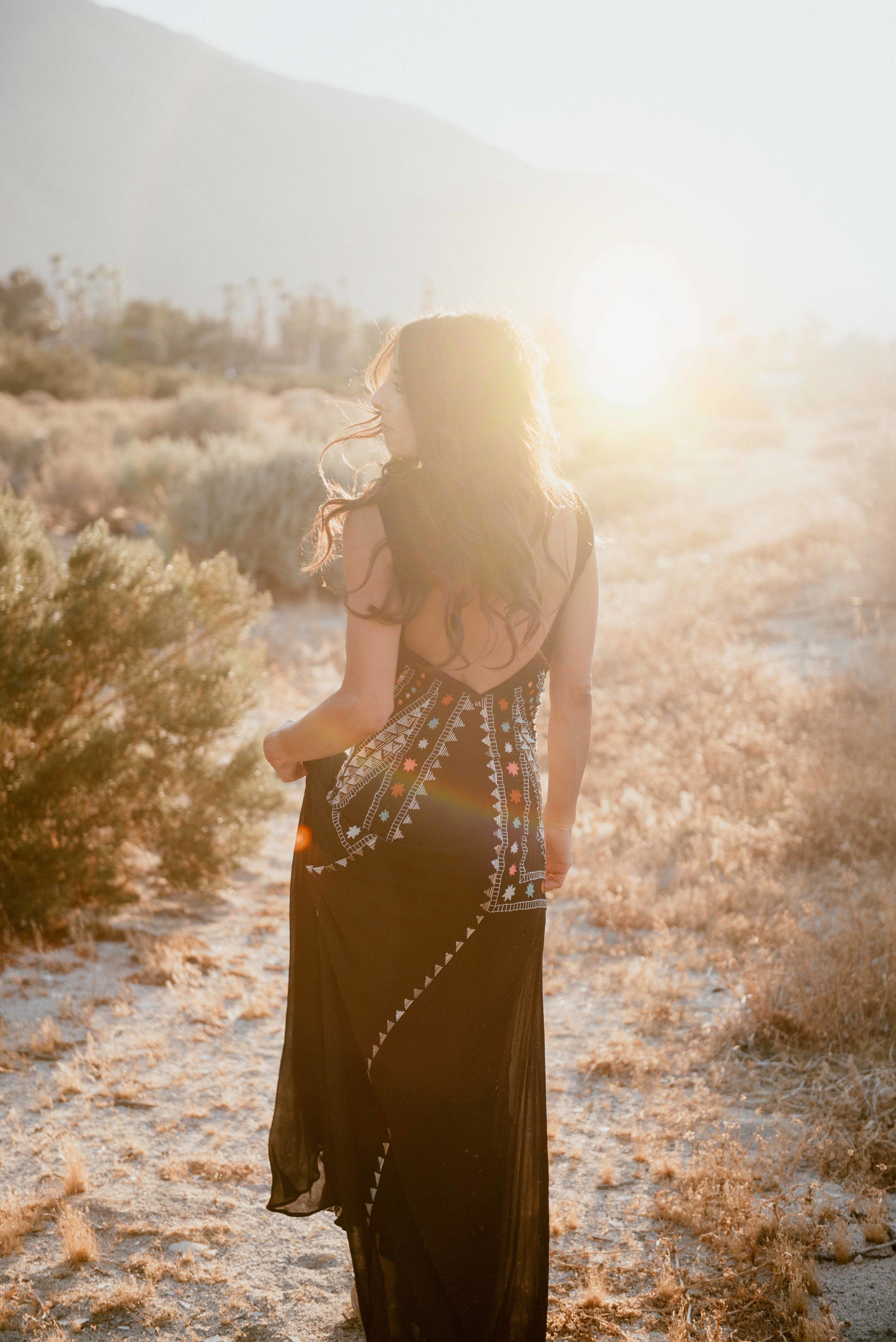 Desert-Field-1.jpg
