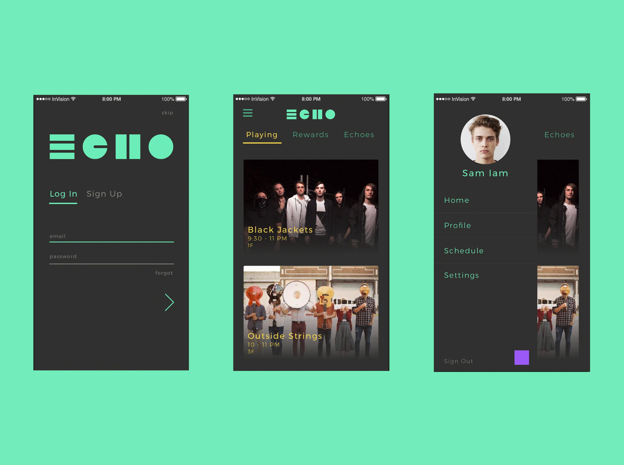 echo screens.jpg