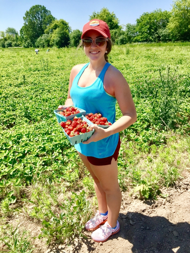 Off The Vine-- Strawberry Picking