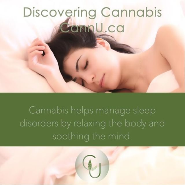 #cannabis helps manage sleep disorders by relaxing the body and soothing the mind. 🌱 #discoveringcannabis #onlinelearning #cannu #healthyliving #cannabiseducation #onlinecourses #ineedsleep
