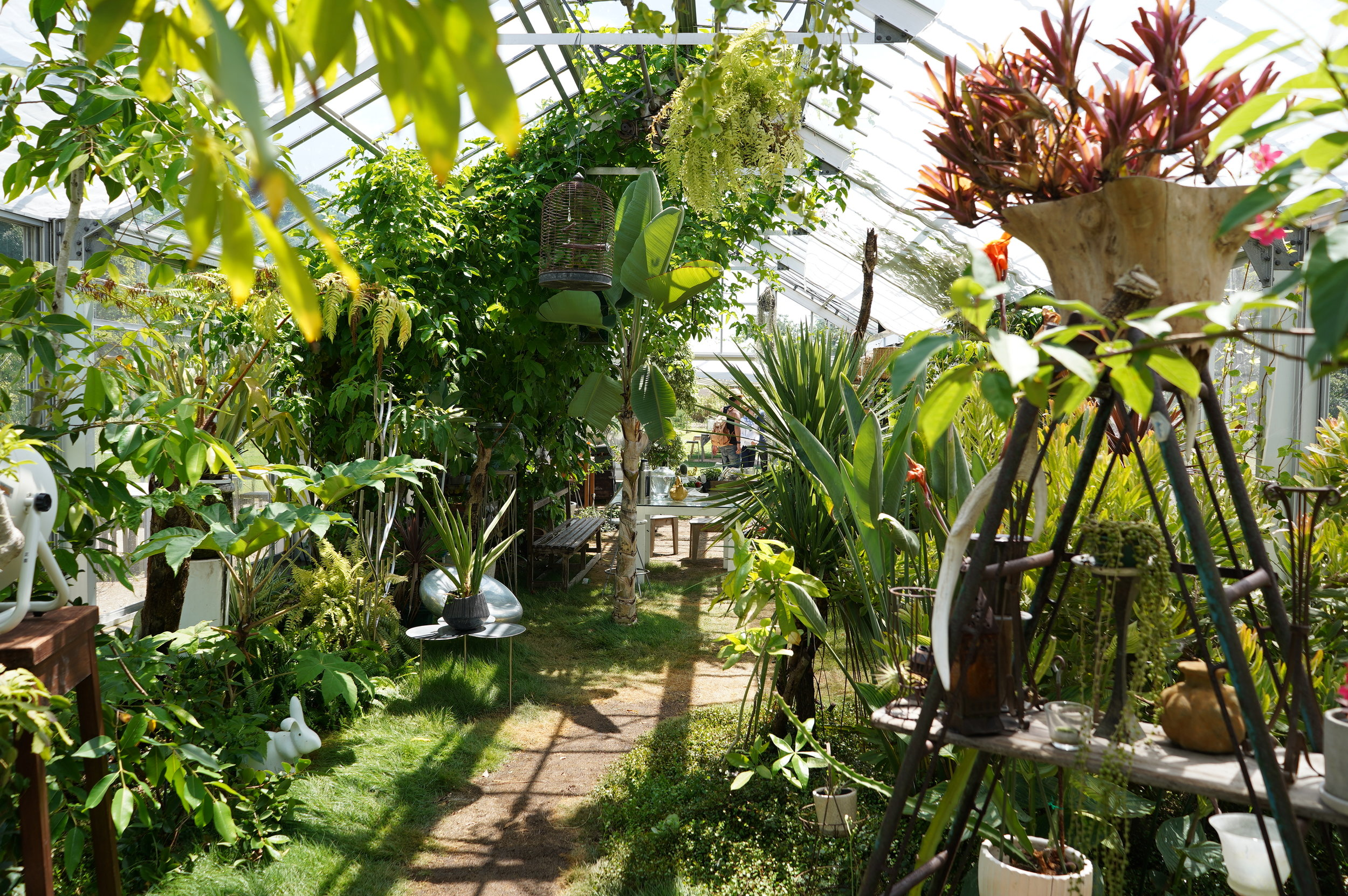 Inside the paradise greenhouse on Inujima. Photo by the author.