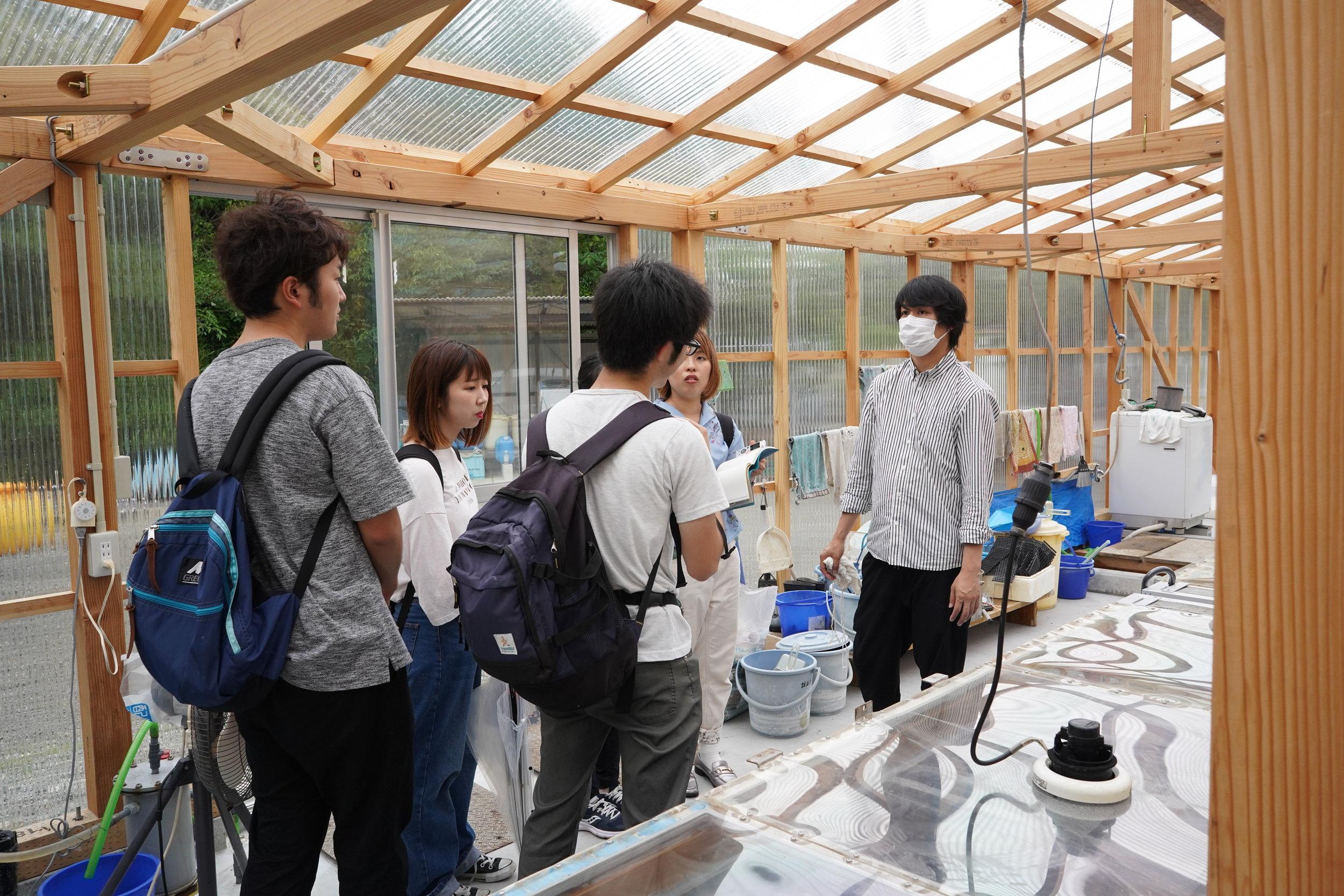 直島で生産されているSOLASHIOの塩工場を見学しました。 Students learned about local salt production at Solashio.