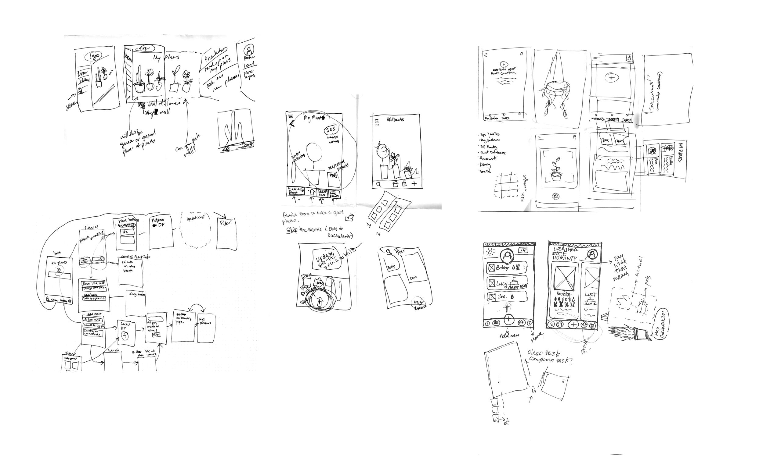 plantrsketches.png