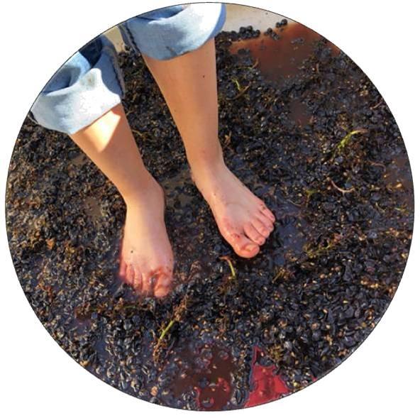 ROUND-FeetStomping-1-LeighAnnJones.jpg