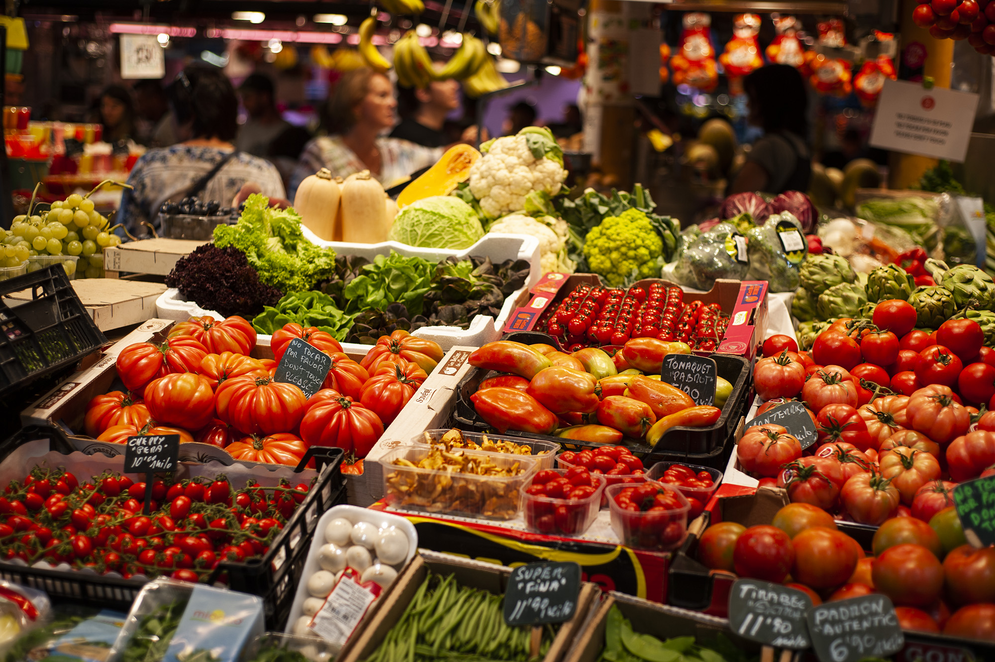 Save lots of money on your tomato purchases (Barcelona, Spain, 2017  ©  JOEL ANG PHOTOGRAPHY)