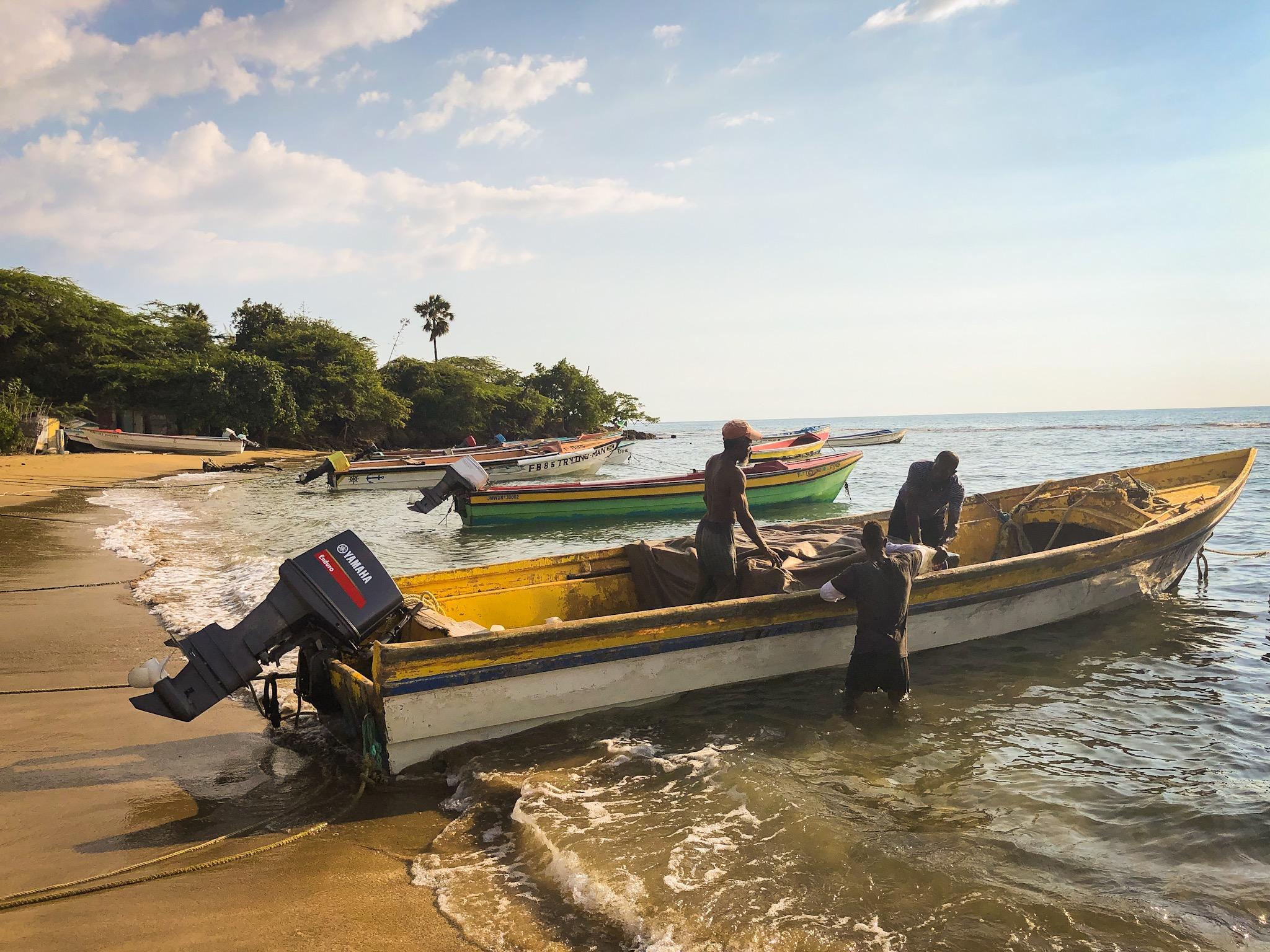 Daily Catch (Treasure Beach, Jamaica, 2018,  ©  JOEL ANG PHOTOGRAPHY)