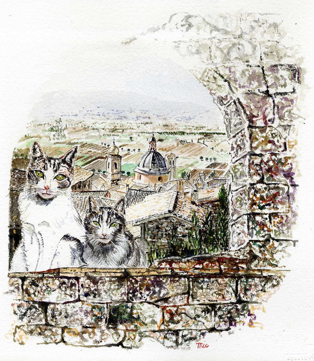Brother and Sister Cat in Assisi - Water Color Private Collection Coby and Nancy MartinGiclee Limited Edition and canvas prints are available. Please visit the prints gallery.