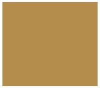 WP-Logo-07 200pxlight.png